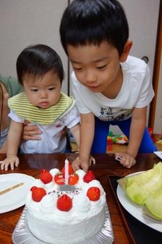 cake_n.jpg