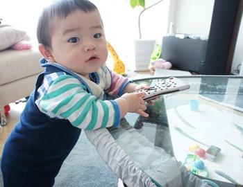 haru_11042601.jpg
