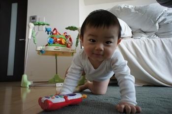 haru_11052001.jpg